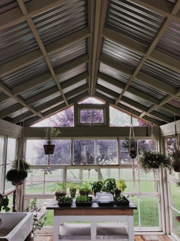 the entire back of the greenhouse is antique windows. DROOL.